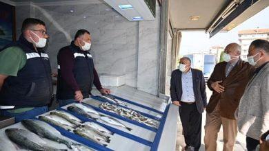 Photo of Başkan Çebi Balıkçı Esnafını Ziyaret Etti
